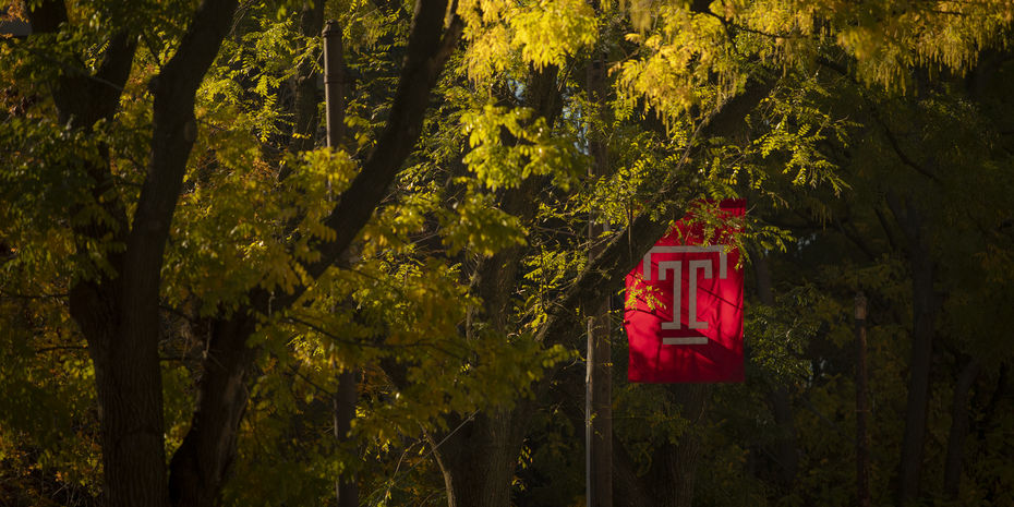 Fall colors with Temple T flag